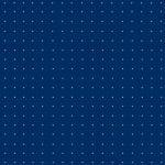 Sinine Email Terasest Pind- Koordinaadiga